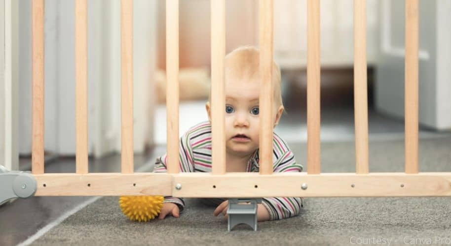Portable gate vs Retractable baby gate